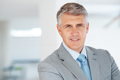 Buy stock photo Portrait of a successful mature businessman looking at you with a smile
