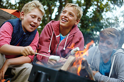 What\'s a camping trip without marshmallows around the campfire?