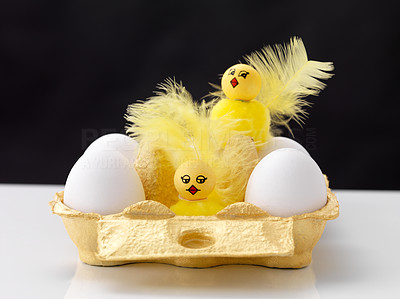 Buy stock photo Raw eggs with cute little chicks in a cardboard container against black background