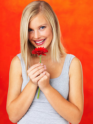 Buy stock photo Pretty woman holding up daisy on orange background