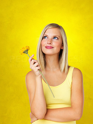 Buy stock photo Woman holding flower and looking up against yellow background