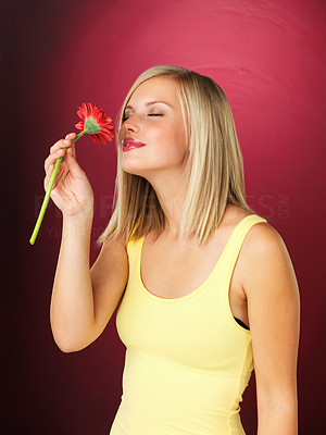 Buy stock photo Pretty woman smelling daisy with eyes closed