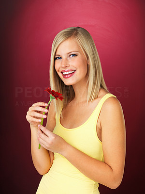 Buy stock photo Pretty blonde holding daisy and smiling against red background