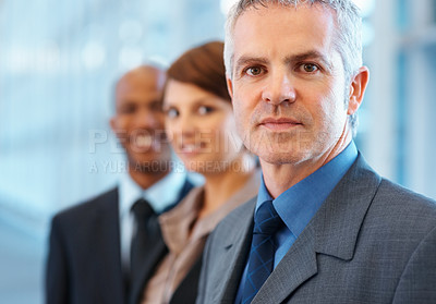 Buy stock photo Portrait of mature business man with colleagues in background