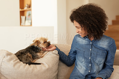 Buy stock photo Shot of a young woman and her dog on the sofa at home