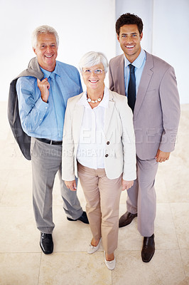 Buy stock photo Portrait of three busines executives standing together looking confidently at you