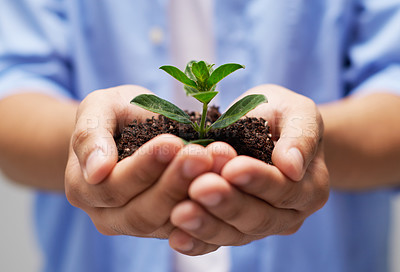 Buy stock photo Cropped shot of a person holding a pile of soil with a budding plant