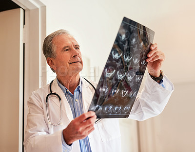 Buy stock photo Cropped shot of a mature doctor holding up an x-ray to examine it