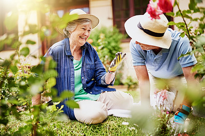 Buy stock photo Shot of an affectionate senior couple gardening at home