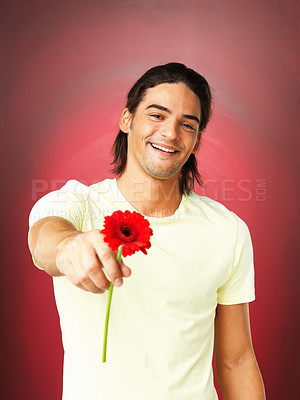 Buy stock photo Portrait of happy man holding daisy flower on red background