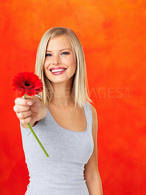 Buy stock photo Pretty woman offering you with daisy