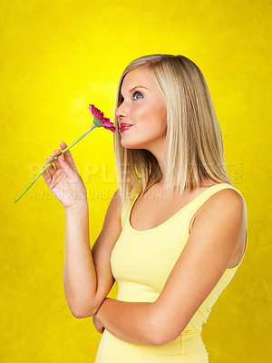 Buy stock photo Side view of pretty blonde woman smelling daisy against yellow background