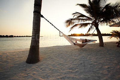 Buy stock photo Portrait of a happy woman lying in a  hammock between palm trees on a beach at sunset - copyspace