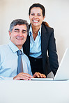 Mature business executives using laptop and smiling