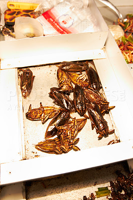 Buy stock photo Closeup of fried cockroaches on a platter
