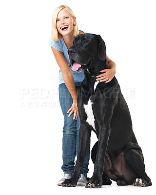 Buy stock photo Laughing young woman isolated on white while alongside a huge great dane - portrait