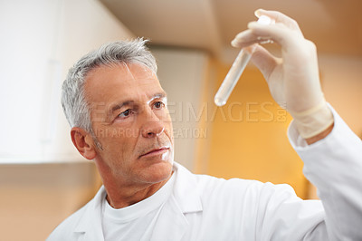 Buy stock photo Mature scientist looking at the test tube in his hand at the laboratory