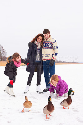 Buy stock photo Shop of a happy couple and their kids playing with geese on a crisp winter's day in the snow