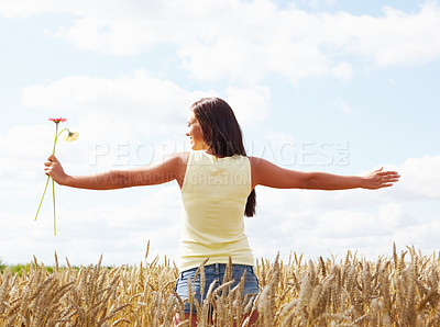 Buy stock photo Rear view of a beautiful female holding flowers on a bright summer day in corn field - copyspace