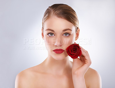 Buy stock photo Studio shot of a beautiful woman holding a rose next to her face