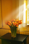 Sunlit tulips on the sidetable