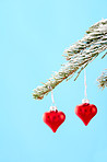 Season of love and goodwill
