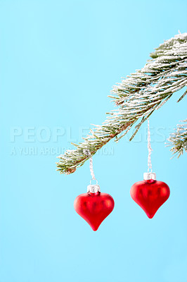 Buy stock photo Heart-shaped christmas decorations hanging from a tree branch, isolated on pale blue - copyspace