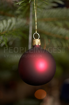 Buy stock photo Christmas bauble hanging in a christmas tree - copyspace