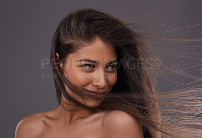 Buy stock photo A young woman with windswept hair in studio
