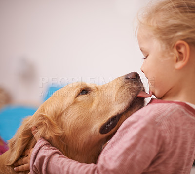 Buy stock photo A cropped shot of a golden retriever licking a cute little girl's face