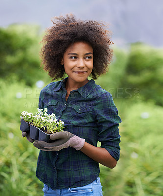 Buy stock photo Shot of a happy young woman holding a tray of seedlings in her garden