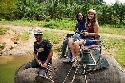 Buy stock photo Portrait of young tourists on an elephant ride through a tropical rainforest