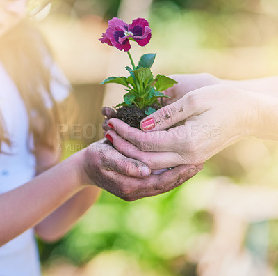 Buy stock photo Closeup shot of a mother and her little daughter holding a plant growing out of soil