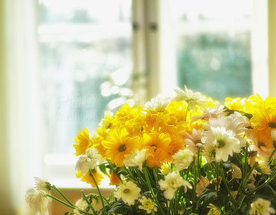 Let flowers brighten up your home!