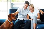 Happy young couple sitting with dog at home