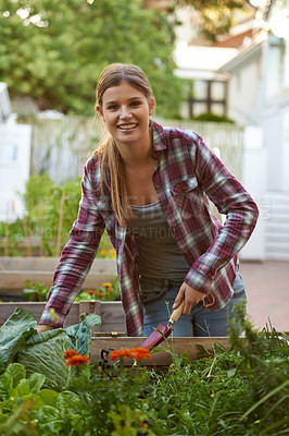 Buy stock photo Shot of a beautiful young woman busy with her plants in her home garden