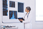 The importance of radiology in medicine