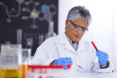 Buy stock photo A senior female scientist working in her lab