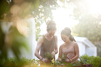 Buy stock photo Shot of a happy young couple enjoying a day of gardening