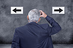 Which way to go...so many difficult decisions!
