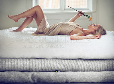 Buy stock photo Shot of a beautiful young woman smelling a rose while lying on bed of oversized blankets