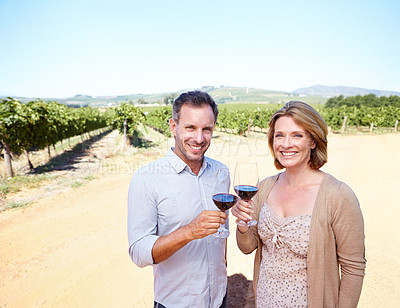 Buy stock photo A mature couple toasting with red wine while standing on a vineyard together