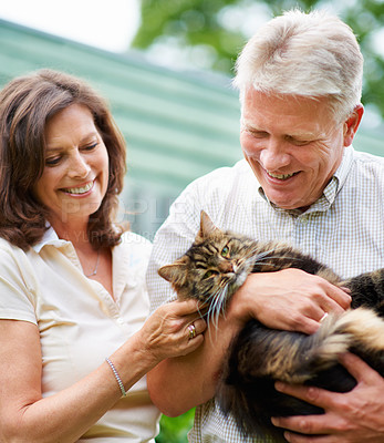 Buy stock photo Cropped shot of a senior couple with their cat outdoors