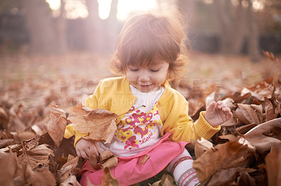 Buy stock photo Shot of an adorable little girl playing outside on an autumn day