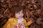 Happiness is…autumn leaves
