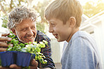 Sharing his passion for plants with his grandson