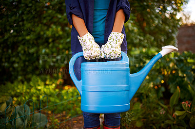 Buy stock photo Cropped shot of a young woman holding a water can while gardening in her backyar
