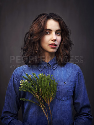 Buy stock photo Portrait of a young woman holding an evergreen branch