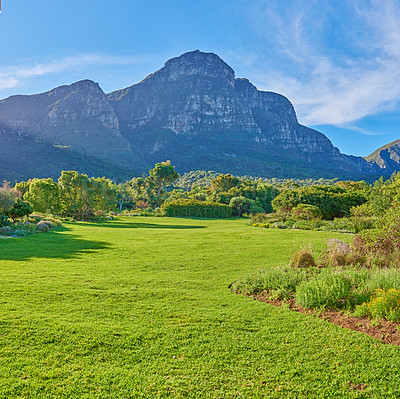 Buy stock photo Nature surrounding the city of Cape Town, South Africa