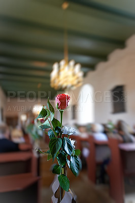 Buy stock photo A photo of a red rose - wedding in a Danish Church